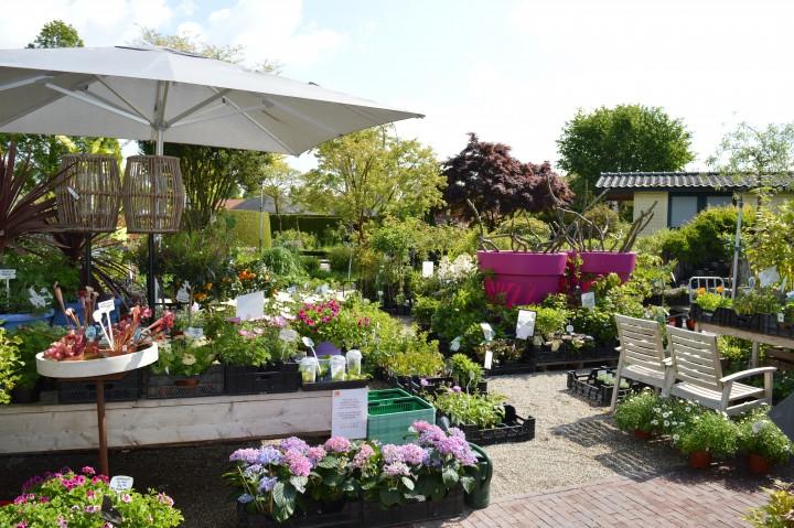 Plantenmarkt Appeltern