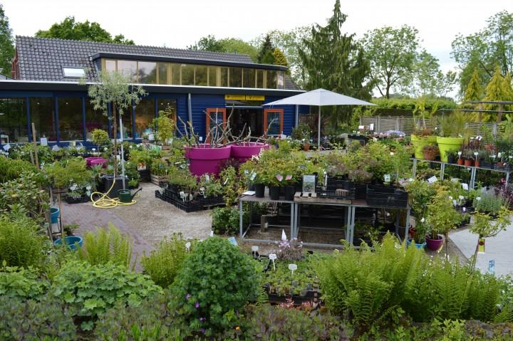 Plantenmarkt Tuinen van Appeltern