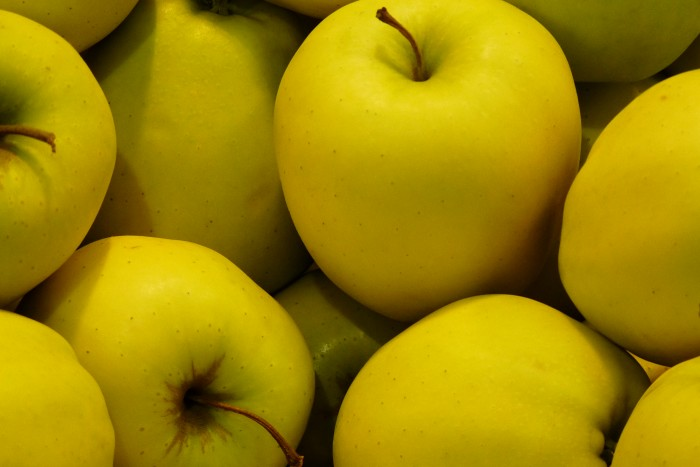 Appelboom Golden Delicious.JPG