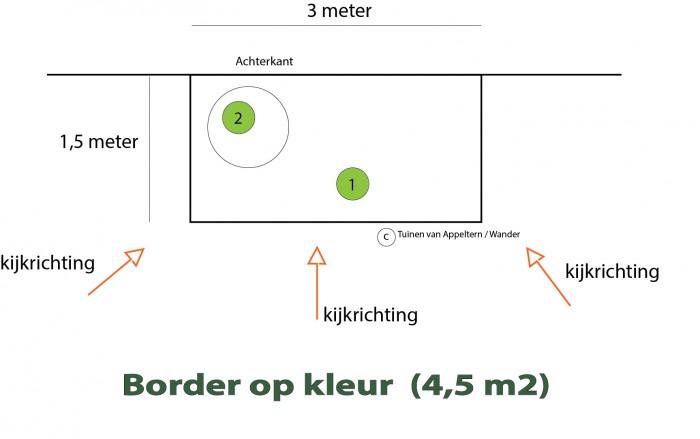 Border op kleur (5).jpg