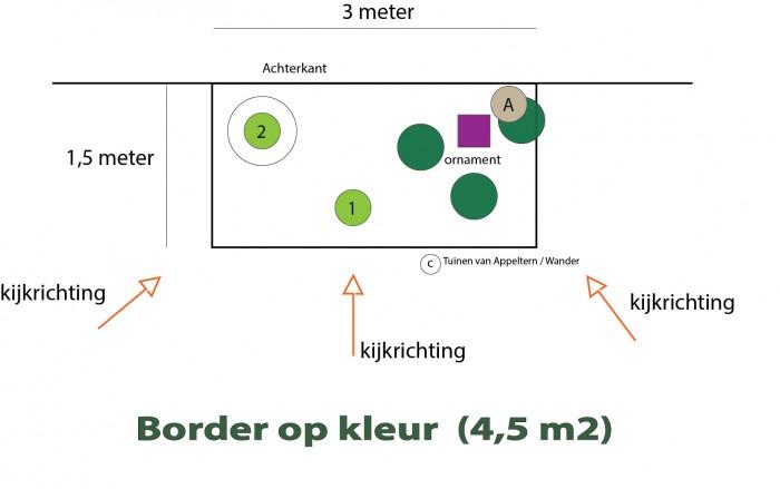 Border op kleur (2).jpg