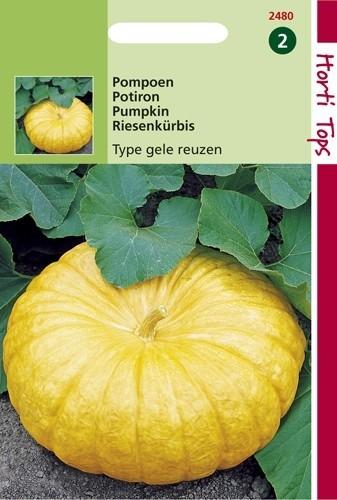 Pompoen Gele Centenaars (Pompoenen zaad).jpg