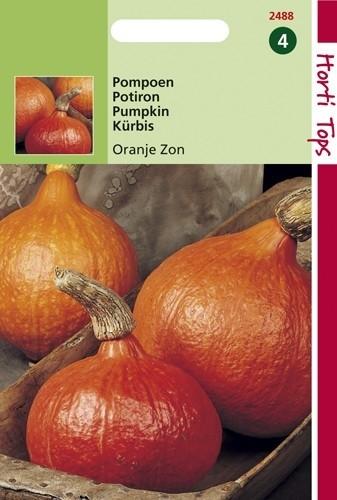 Pompoen Oranje Zon (Pompoenen zaad).jpg