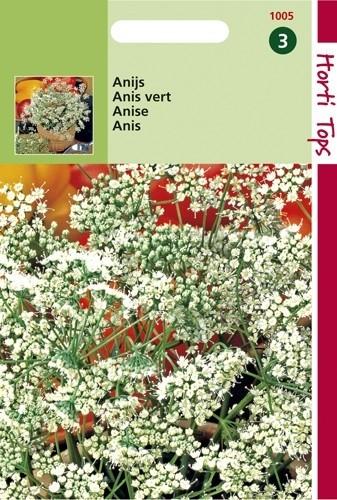 Anijs (zaad Pimpinella anisum).jpg
