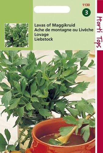 Lavas of Maggikruid (zaad Levisticum officinalis).jpg