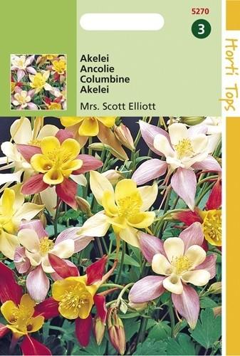 Aquilegia hybrida Mrs. Scott Elliot (zaad Akelei, gemengd).jpg