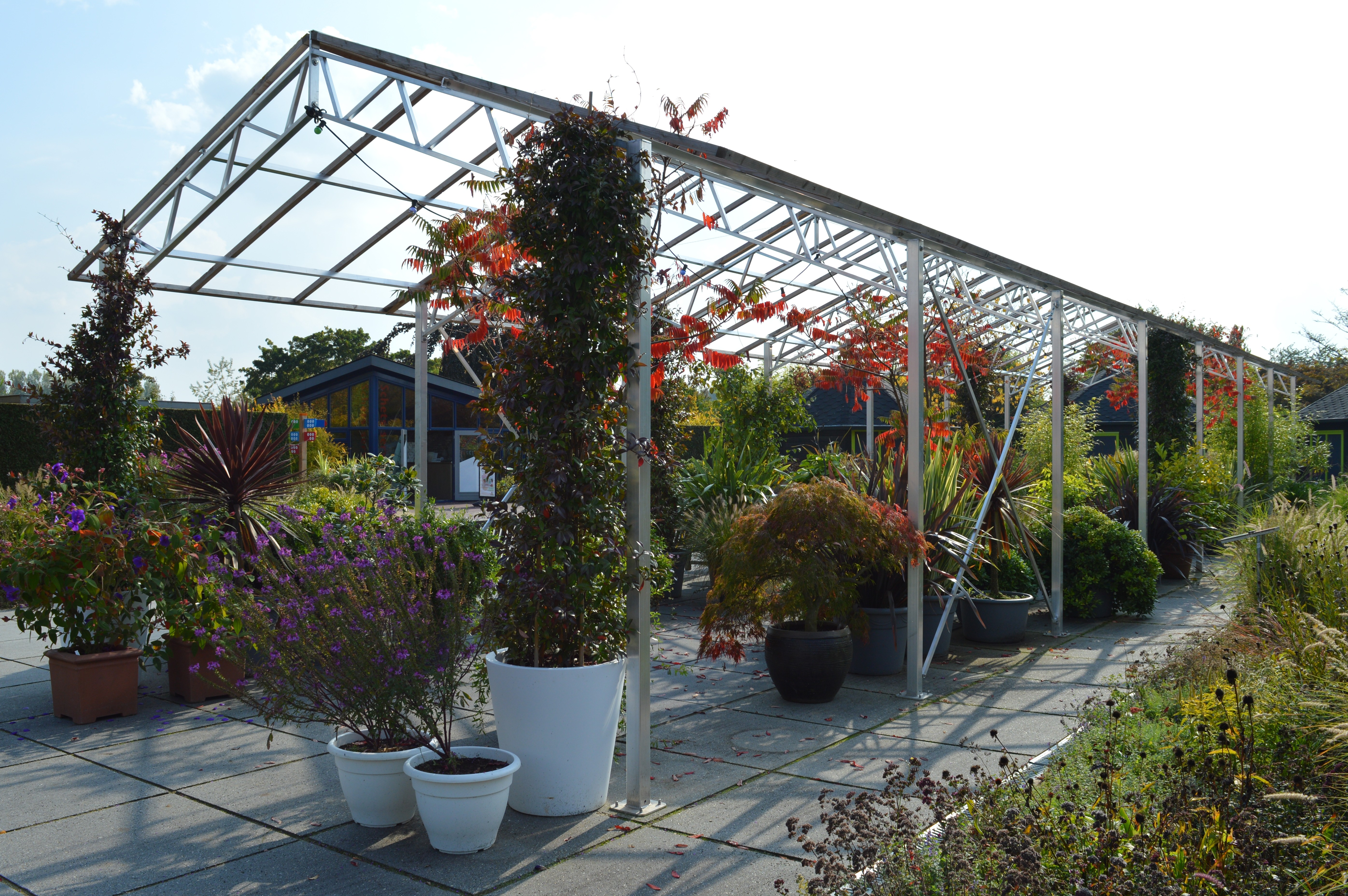 Potplanten terras - De Tuinen van Appeltern