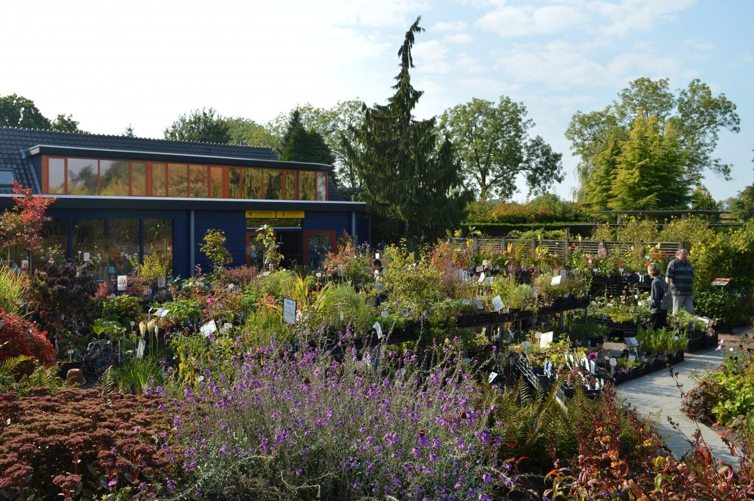 De mooiste nazomerplanten   De Tuinen van Appeltern