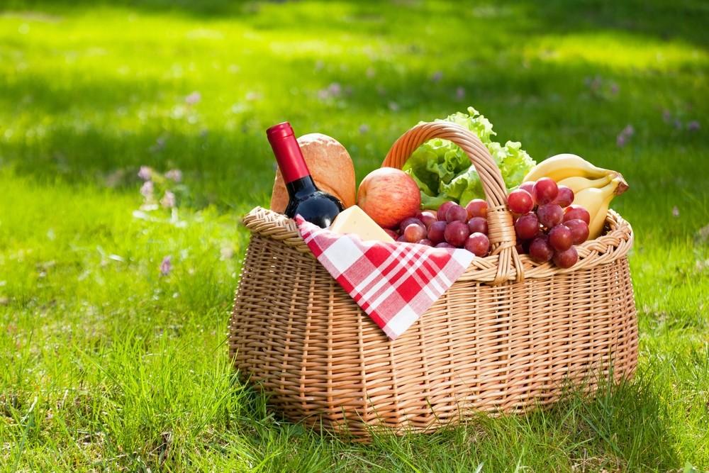 Appeltern Picknick | De Tuinen van Appeltern