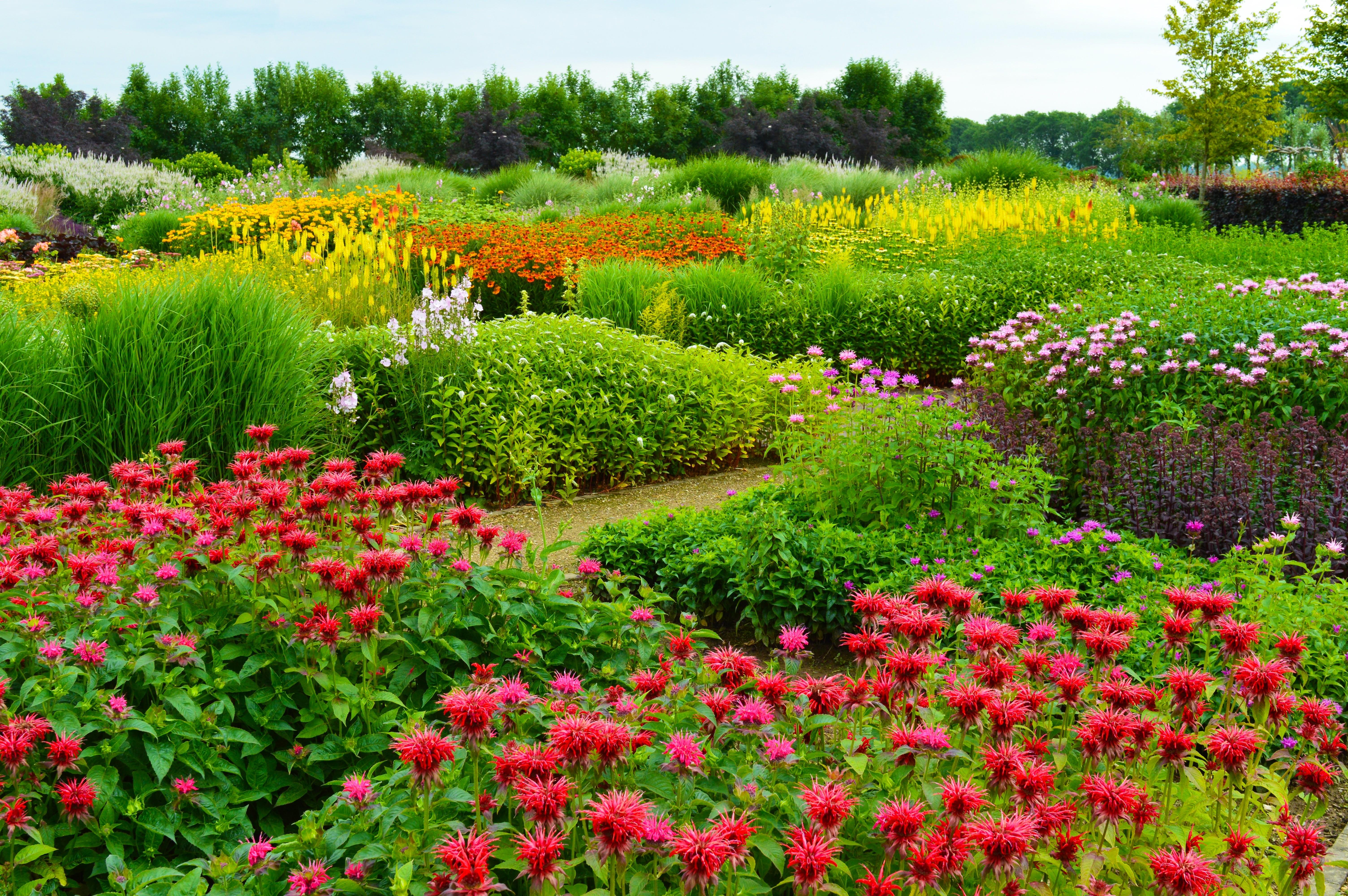 nationale vaste plantentuin.jpg