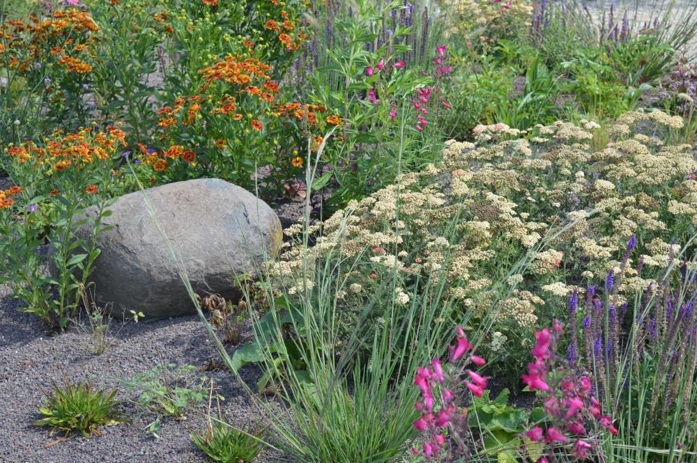 Prairiegarden - De Tuinen van Appeltern