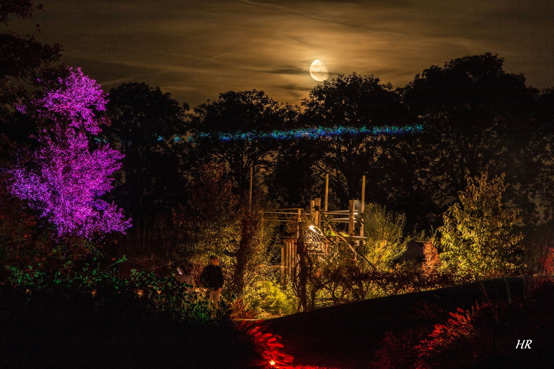 Mystery Gardens in Lights 2018