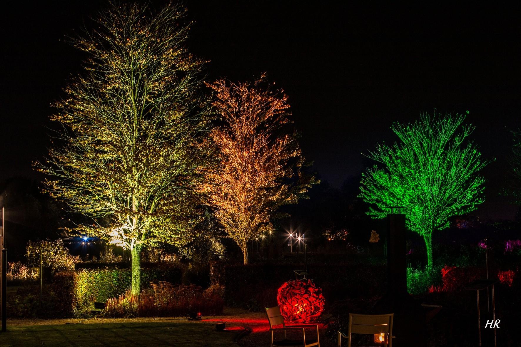 Mystery Gardens in Lights 2018