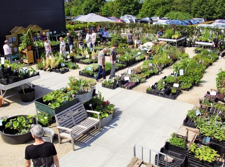 plantenmarkt.jpg