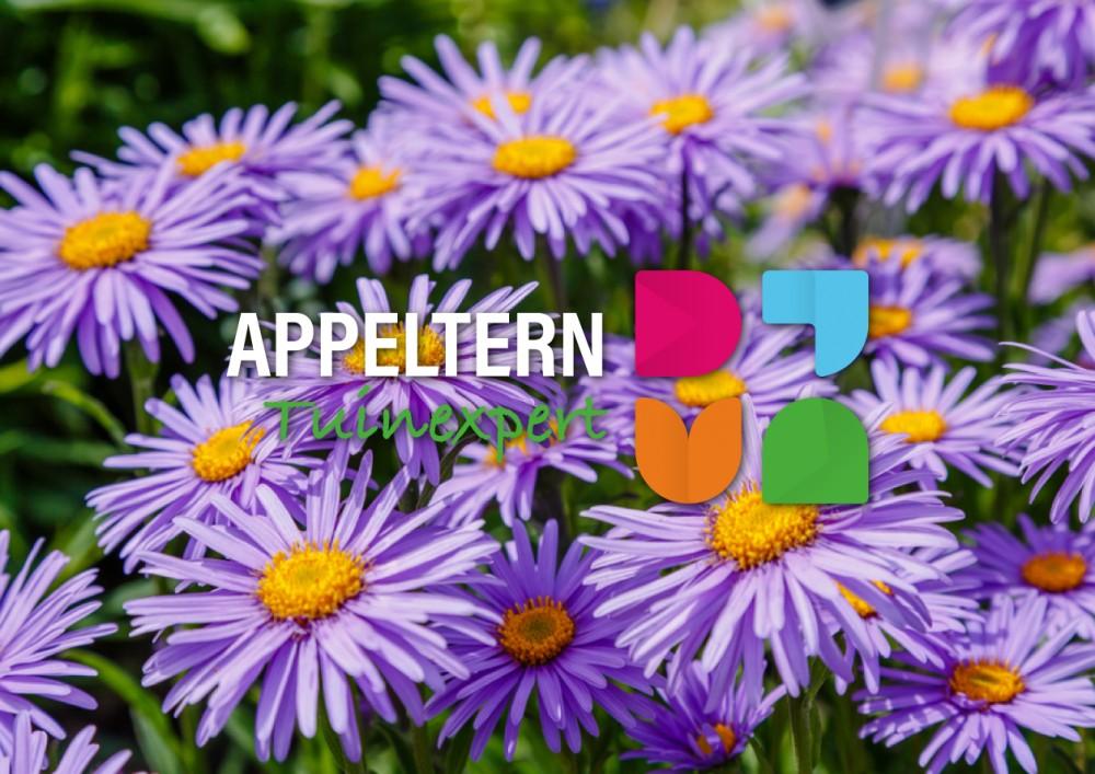 Logo Appeltern Tuinexpert