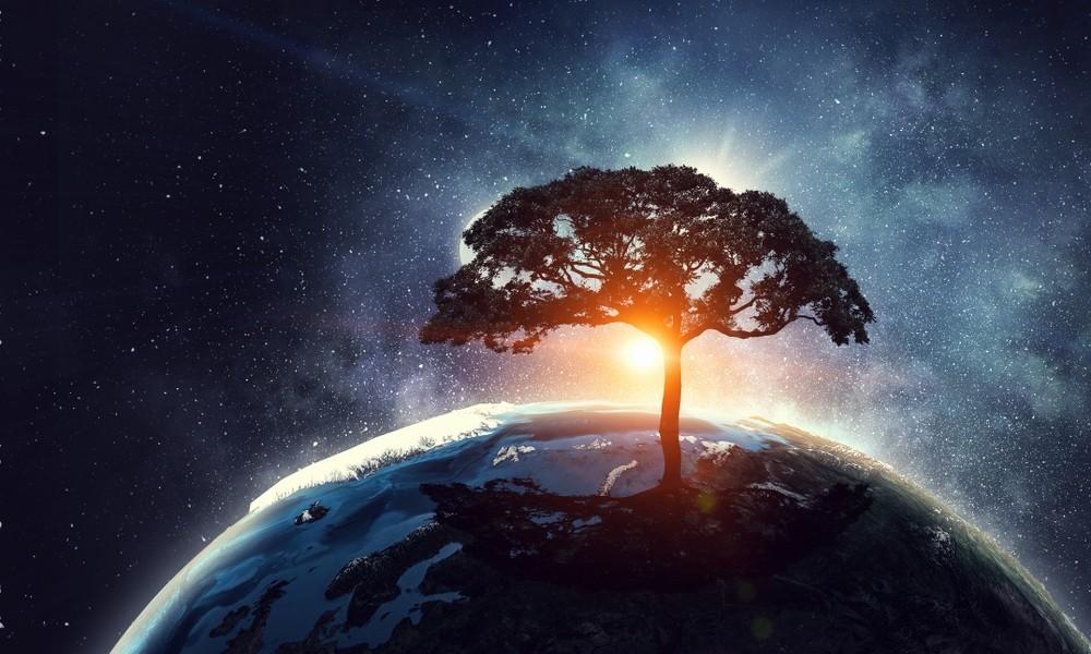 Universum - De Tuinen van Appeltern