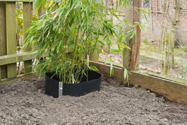 Anti-wortel barriere - De Tuinen van Appeltern