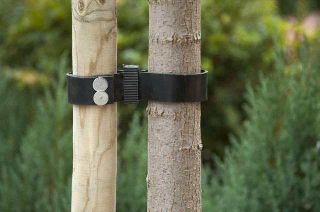 Boomband - De Tuinen van Appeltern