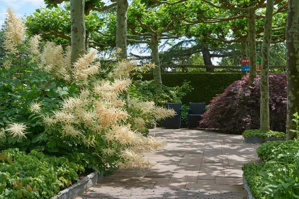 Plantcombinaties - De Tuinen van Appeltern