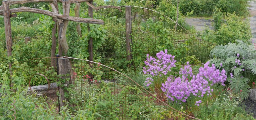 Wilde Weelde | De Tuinen van Appeltern