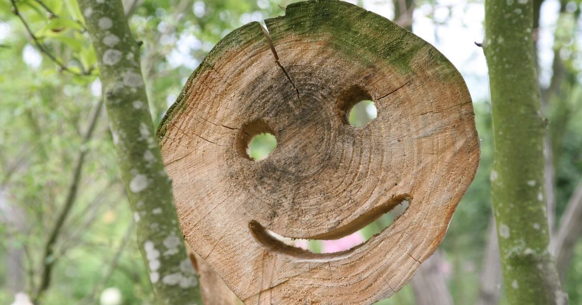 Tips en trucs de tuinen van appeltern for Tuinontwerp tips