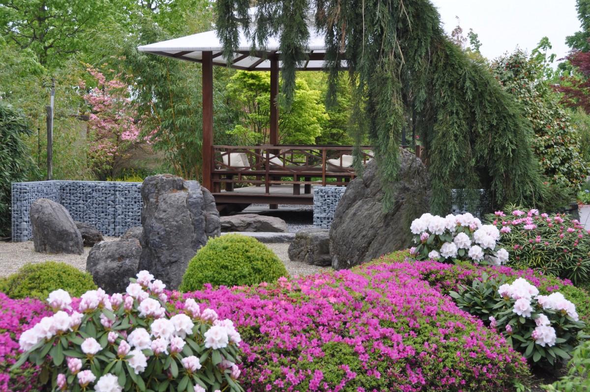 De Tuinen van Appeltern (3).jpg