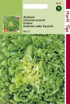 Andijvie Nummer Vijf (zaad Cichorum endivia).jpg