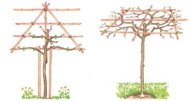 Verticale leistructuur en rechts een platte dakvorm