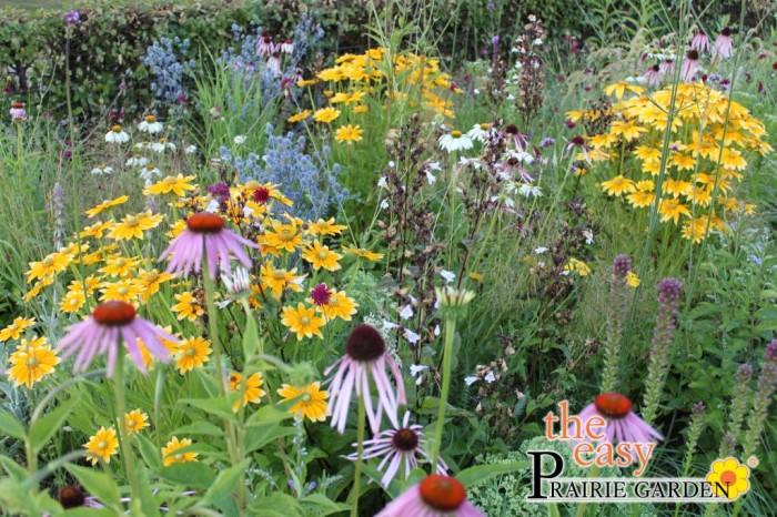 Prairie planten Agate 00000418.jpg