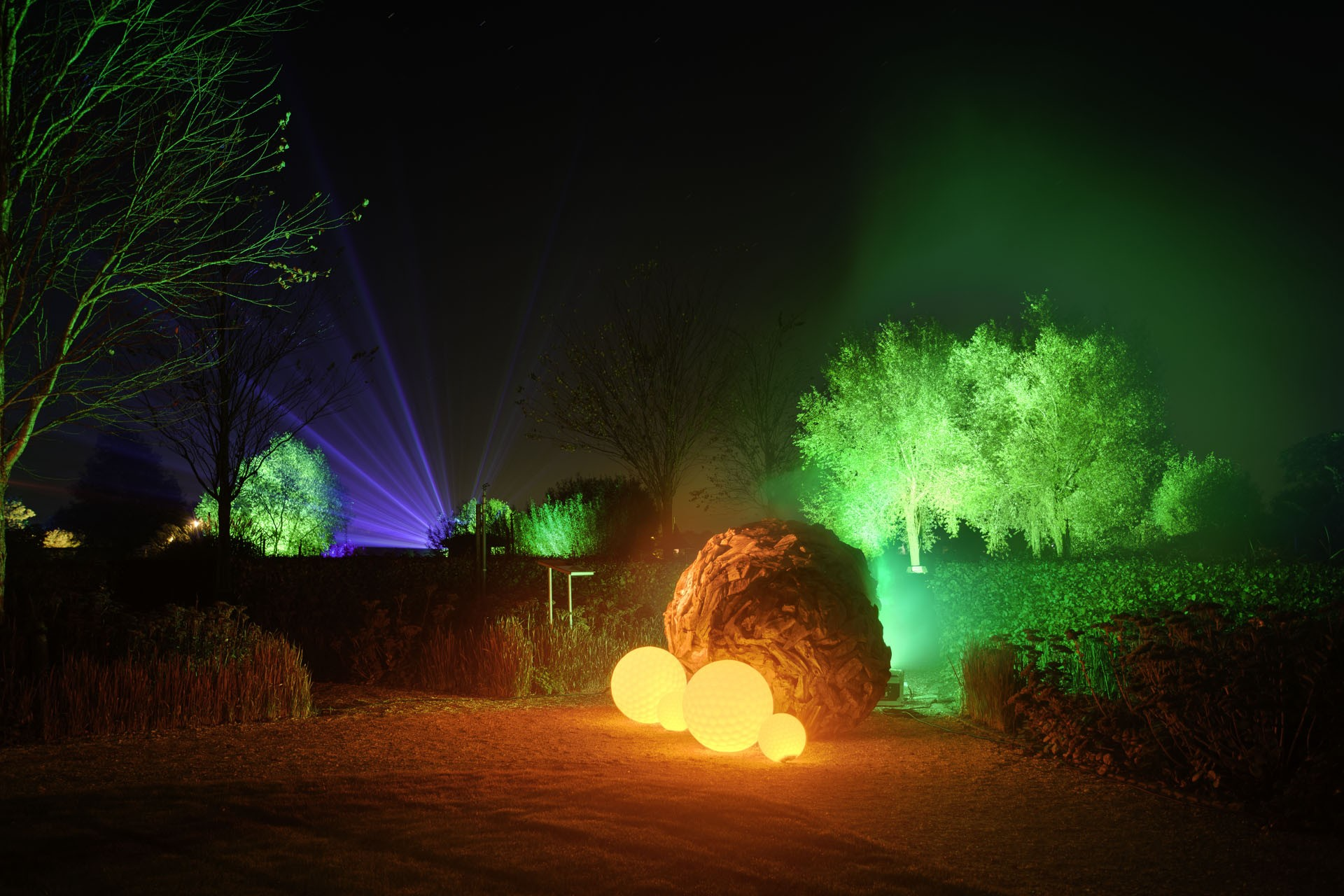 Mystery Gardens in Lights 3.jpg